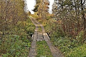 Село Реброво Галичский район.